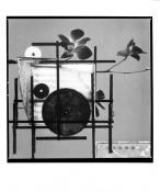 Orchidea konstrukt II. (P. Mondrian)_2003/2004