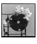 Orchidea konstrukt III. (V.Boštík) _2003/2004