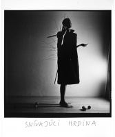 Snívajúci hrdina_1988